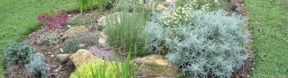 Corner House Herbs