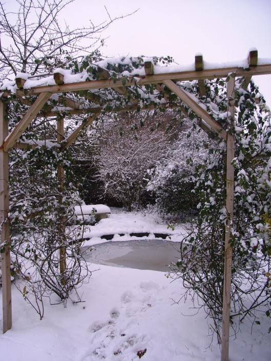snow 2013 17